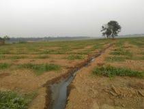 Terra dell'azienda agricola Immagine Stock