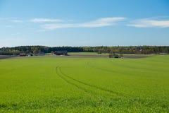 Terra dell'azienda agricola con un campo fotografie stock