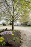 Terra dell'azienda agricola di Arthur Illnois Amish fotografia stock libera da diritti