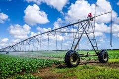 Terra dell'azienda agricola di irrigazione Immagini Stock Libere da Diritti
