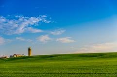 Terra dell'azienda agricola di Ontario fotografia stock libera da diritti