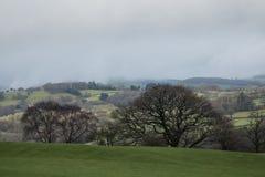 Terra dell'azienda agricola di rotolamento nelle valli di Lingua gallese immagini stock