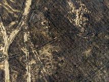 Terra devastante, dopo un fuoco, vista superiore Eventi di emergenza e di disastro, impatto negativo sulla natura fotografia stock