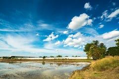 Terra di agricoltura Fotografia Stock