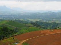 Terra di agricoltura in montagna Fotografia Stock