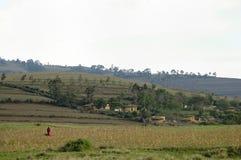 Terra di azienda agricola - Tanzania Immagine Stock Libera da Diritti