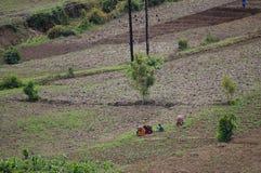 Terra di azienda agricola - Tanzania Fotografia Stock