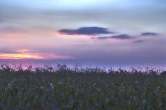 Terra di Padana fotografie stock