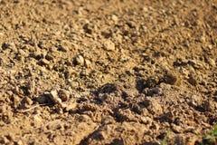 Terra di recente arata Una struttura brunastra di sollievo Allenti il suolo per piantare agricoltura Affare agricolo Tecnologia d Immagini Stock