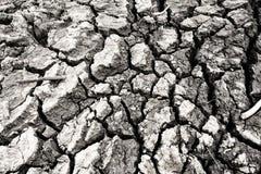 Terra di siccità così lungamente senz'acqua Immagini Stock Libere da Diritti
