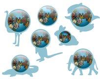 Terra do ícone com texturas animais Imagem de Stock Royalty Free