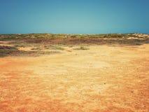 Terra do deserto com areia e pedras (2) Imagem de Stock