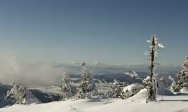 Terra do inverno Imagem de Stock Royalty Free