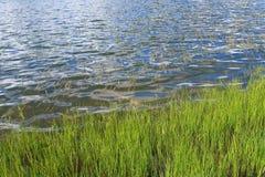 Terra do lago e de exploração agrícola da grama Fotos de Stock