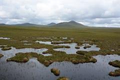 Terra do pântano do país do fluxo fotografia de stock royalty free