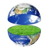 Terra do planeta com grama no fundo branco Imagens de Stock Royalty Free
