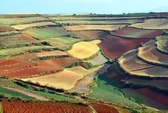 Terra do vermelho de Dongchuan Foto de Stock