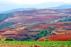 Terra do vermelho de Dongchuan Fotografia de Stock