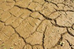 Terra dopo l'inondazione Fotografie Stock