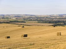 Terra Dorset Inglaterra de Dorchester Imagem de Stock