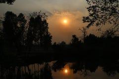 Terra e árvore com fundo do por do sol imagens de stock