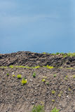 Terra e céu da sujeira fotografia de stock