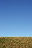 Terra e cielo fotografia stock libera da diritti