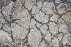 Terra e diferenças Fotografia de Stock