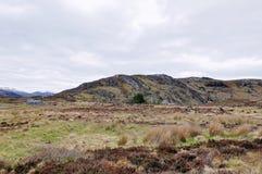 Terra e montanhas em Escócia Imagens de Stock Royalty Free