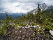 Terra ed erba su una cima sulla montagna con la bella vista su paesaggio dei moutains delle dolomia e su una foresta di gree del  Immagini Stock Libere da Diritti