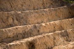 Terra escavada por etapas Fotografia de Stock