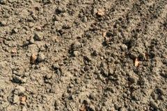 Terra estéril e da seca fotografia de stock