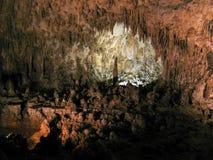 Terra feericamente em cavernas de Carlsbad foto de stock royalty free