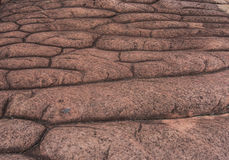 A terra firme rochosa do botão ocorre naturalmente no natio do kra do rong do hin de Phu Imagens de Stock