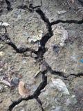 Terra incrinata Immagini Stock