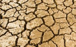 Terra incrinata asciutta Immagini Stock