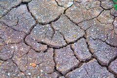 Terra incrinata asciutta con la sabbia Fotografia Stock Libera da Diritti