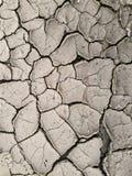 Terra incrinata asciutta - siccità Immagine Stock Libera da Diritti