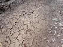 Terra incrinata, percorso, suolo asciutto Concetto di ecologia Struttura incrinata e fondo della terra Campo asciutto, acqua, ter immagine stock libera da diritti