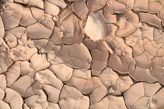 Terra incrinata secca Fotografia Stock