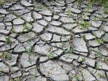 Terra incrinata secca Fotografie Stock Libere da Diritti