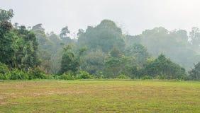 Terra lisa com grama na cume na estação do inverno Imagem de Stock