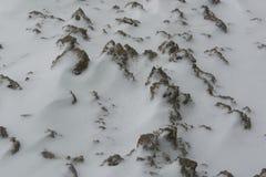 Terra marrone rannicchiantesi della neve Immagini Stock Libere da Diritti