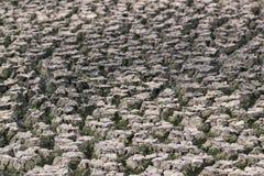 Terra nella siccità fotografie stock libere da diritti