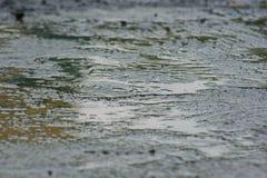 Terra nella stagione delle pioggie Fotografia Stock