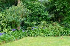 Terra Nostra Garden en la ciudad de Furnas, isla de Miguel del sao, Azores, Portugal Fotos de archivo