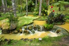 Terra Nostra Garden in Furnas-stad, het eiland van Saomiguel, de Azoren, Portugal stock afbeelding