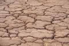 Terra Parched Foto de Stock