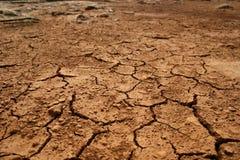 Terra Parched após um verão quente fotografia de stock