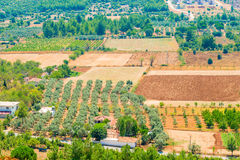 Terra per agricoltura Immagini Stock